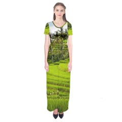 Rice Terrace Terraces Short Sleeve Maxi Dress
