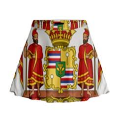 Kingdom Of Hawaii Coat Of Arms, 1850 1893 Mini Flare Skirt by abbeyz71