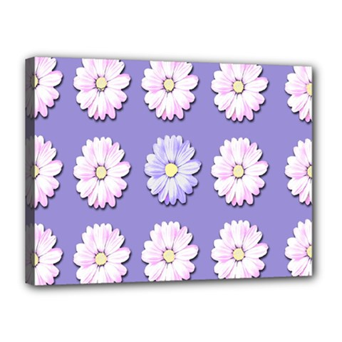 Daisy Flowers Wild Flowers Bloom Canvas 16  X 12