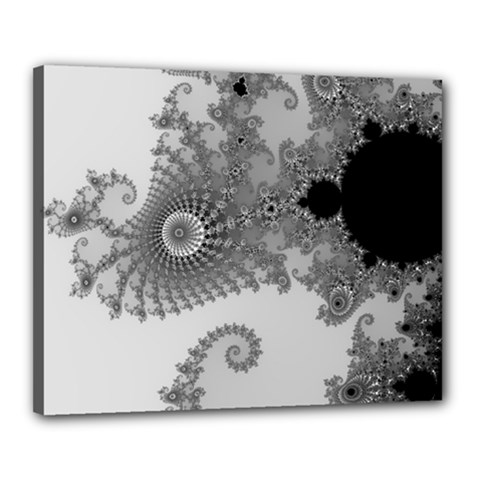 Apple Males Mandelbrot Abstract Canvas 20  X 16