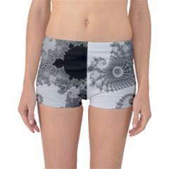 Apple Males Mandelbrot Abstract Boyleg Bikini Bottoms