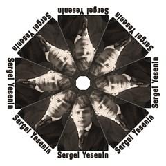 Sergei Yesenin Hook Handle Umbrellas (medium) by Valentinaart