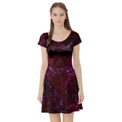Damask1 Black Marble & Burgundy Marble (r) Short Sleeve Skater Dress