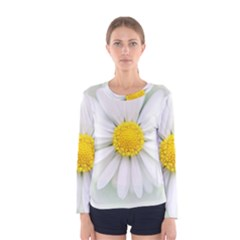 Art Daisy Flower Art Flower Deco Women s Long Sleeve Tee