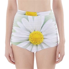 Art Daisy Flower Art Flower Deco High Waisted Bikini Bottoms