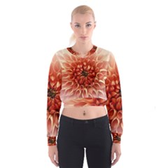 Dahlia Flower Joy Nature Luck Cropped Sweatshirt