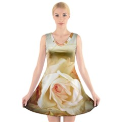 Roses Vintage Playful Romantic V Neck Sleeveless Skater Dress