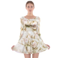 Pastel Roses Antique Vintage Long Sleeve Skater Dress