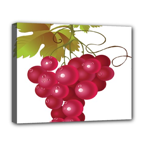 Red Fruit Grape Deluxe Canvas 20  X 16   by Mariart