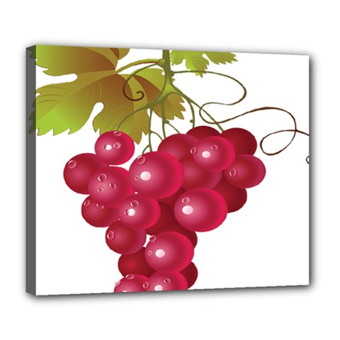 Red Fruit Grape Deluxe Canvas 24  X 20   by Mariart