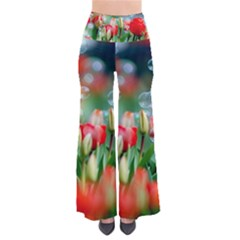 Colorful Flowers Pants by Mariart