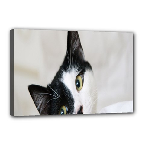 Cat Face Cute Black White Animals Canvas 18  X 12  by Mariart