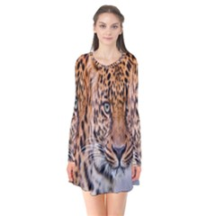 Tiger Beetle Lion Tiger Animals Leopard Flare Dress by Mariart