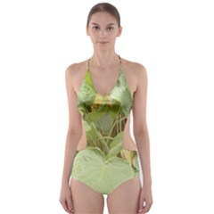 Img 20170911 101344 Cut Out One Piece Swimsuit