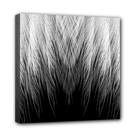 Feather Graphic Design Background Mini Canvas 8  X 8  by Onesevenart
