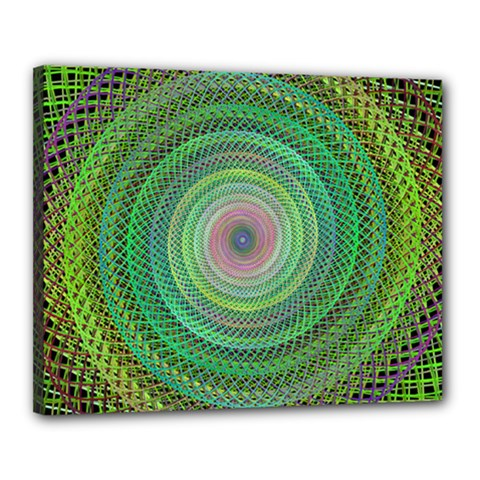 Wire Woven Vector Graphic Canvas 20  X 16  by Onesevenart