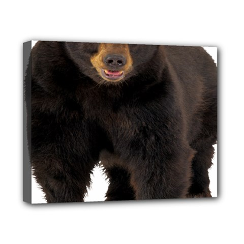 Brown Bears Animals Canvas 10  X 8  by Jojostore