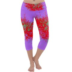 Spot Paint Red Green Purple Sexy Capri Yoga Leggings by AnjaniArt