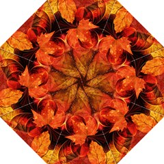 Ablaze With Beautiful Fractal Fall Colors Hook Handle Umbrellas (large) by jayaprime