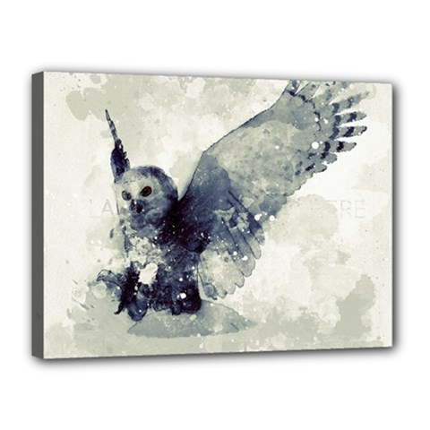 Cute Owl In Watercolor Canvas 16  X 12  by FantasyWorld7