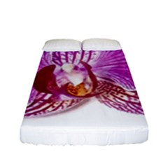 Lilac Phalaenopsis Aquarel  Watercolor Art Painting Fitted Sheet (full/ Double Size)