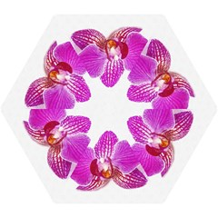 Lilac Phalaenopsis Flower, Floral Oil Painting Art Mini Folding Umbrellas by picsaspassion