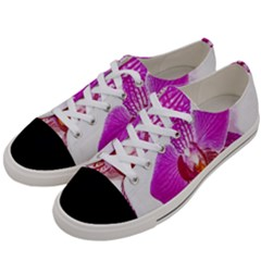Lilac Phalaenopsis Flower, Floral Oil Painting Art Women s Low Top Canvas Sneakers by picsaspassion