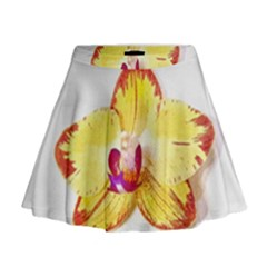 Phalaenopsis Yellow Flower, Floral Oil Painting Art Mini Flare Skirt by picsaspassion