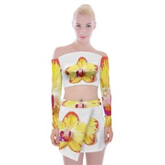 Phalaenopsis Yellow Flower, Floral Oil Painting Art Off Shoulder Top With Mini Skirt Set by picsaspassion