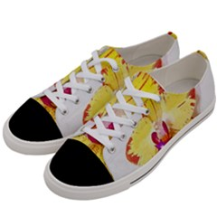 Phalaenopsis Yellow Flower, Floral Oil Painting Art Women s Low Top Canvas Sneakers by picsaspassion