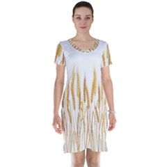 Wheat Plants Short Sleeve Nightdress by Mariart