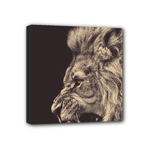 Angry Male Lion Mini Canvas 4  X 4  by Celenk
