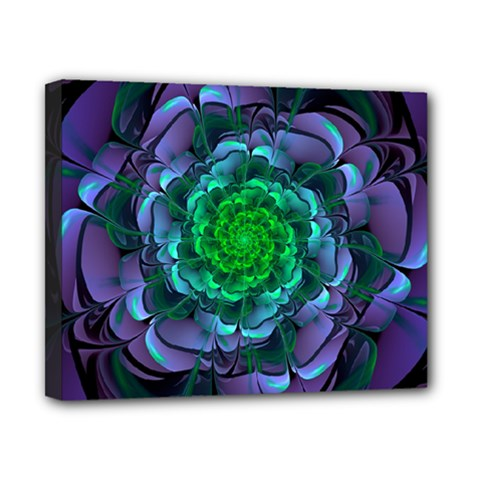 Beautiful Purple & Green Aeonium Arboreum Zwartkop Canvas 10  X 8  by jayaprime