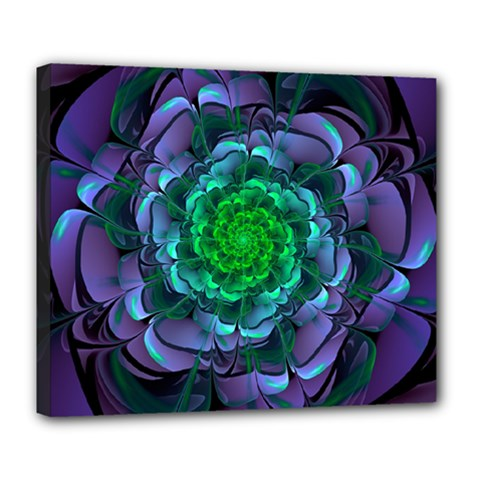 Beautiful Purple & Green Aeonium Arboreum Zwartkop Deluxe Canvas 24  X 20   by jayaprime