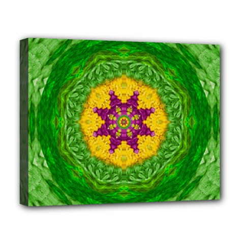 Feathers In The Sunshine Mandala Deluxe Canvas 20  X 16   by pepitasart