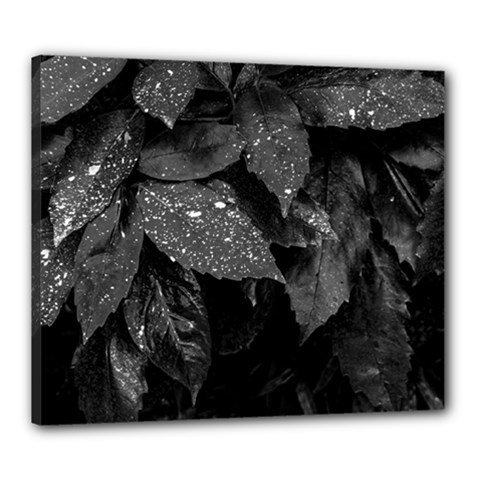 Black And White Leaves Photo Canvas 24  X 20  by dflcprintsclothing