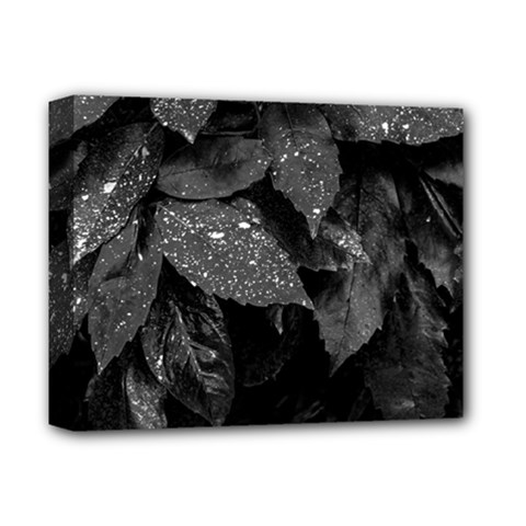 Black And White Leaves Photo Deluxe Canvas 14  X 11  by dflcprintsclothing