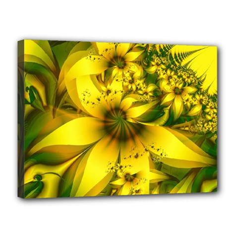 Beautiful Yellow Green Meadow Of Daffodil Flowers Canvas 16  X 12  by jayaprime