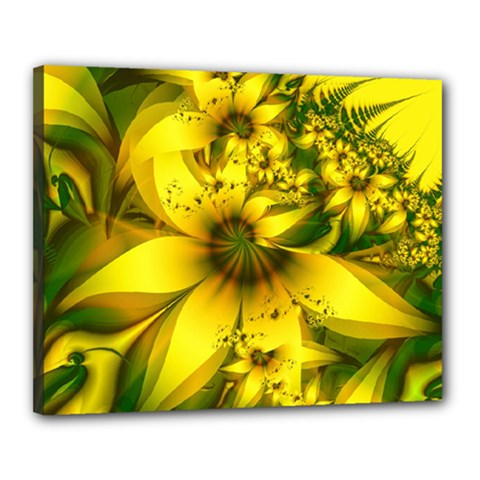 Beautiful Yellow Green Meadow Of Daffodil Flowers Canvas 20  X 16  by beautifulfractals