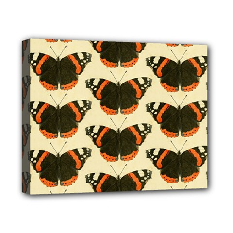 Butterfly Butterflies Insects Canvas 10  X 8  by Celenk