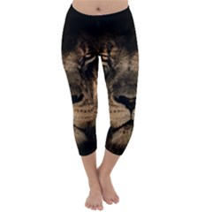 African Lion Mane Close Eyes Capri Winter Leggings