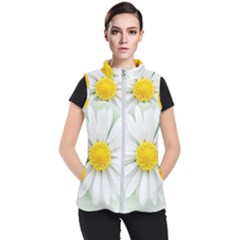 Art Daisy Flower Art Flower Deco Women s Puffer Vest