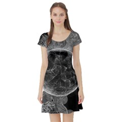 Space Universe Earth Rocket Short Sleeve Skater Dress by Celenk