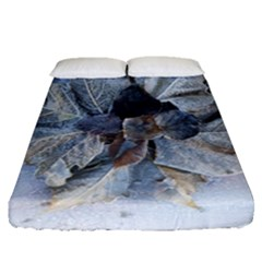 Winter Frost Ice Sheet Leaves Fitted Sheet (queen Size) by Celenk