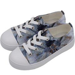 Winter Frost Ice Sheet Leaves Kids  Low Top Canvas Sneakers by Celenk
