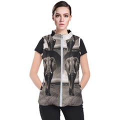 Elephant Black And White Animal Women s Puffer Vest
