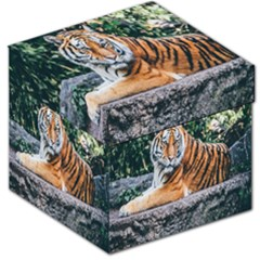 Animal Big Cat Safari Tiger Storage Stool 12   by Celenk
