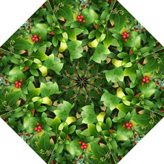 Christmas Season Floral Green Red Skimmia Flower Straight Umbrellas by yoursparklingshop