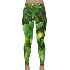 Christmas Season Floral Green Red Skimmia Flower Classic Yoga Leggings by yoursparklingshop