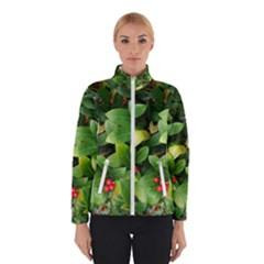Christmas Season Floral Green Red Skimmia Flower Winterwear by yoursparklingshop